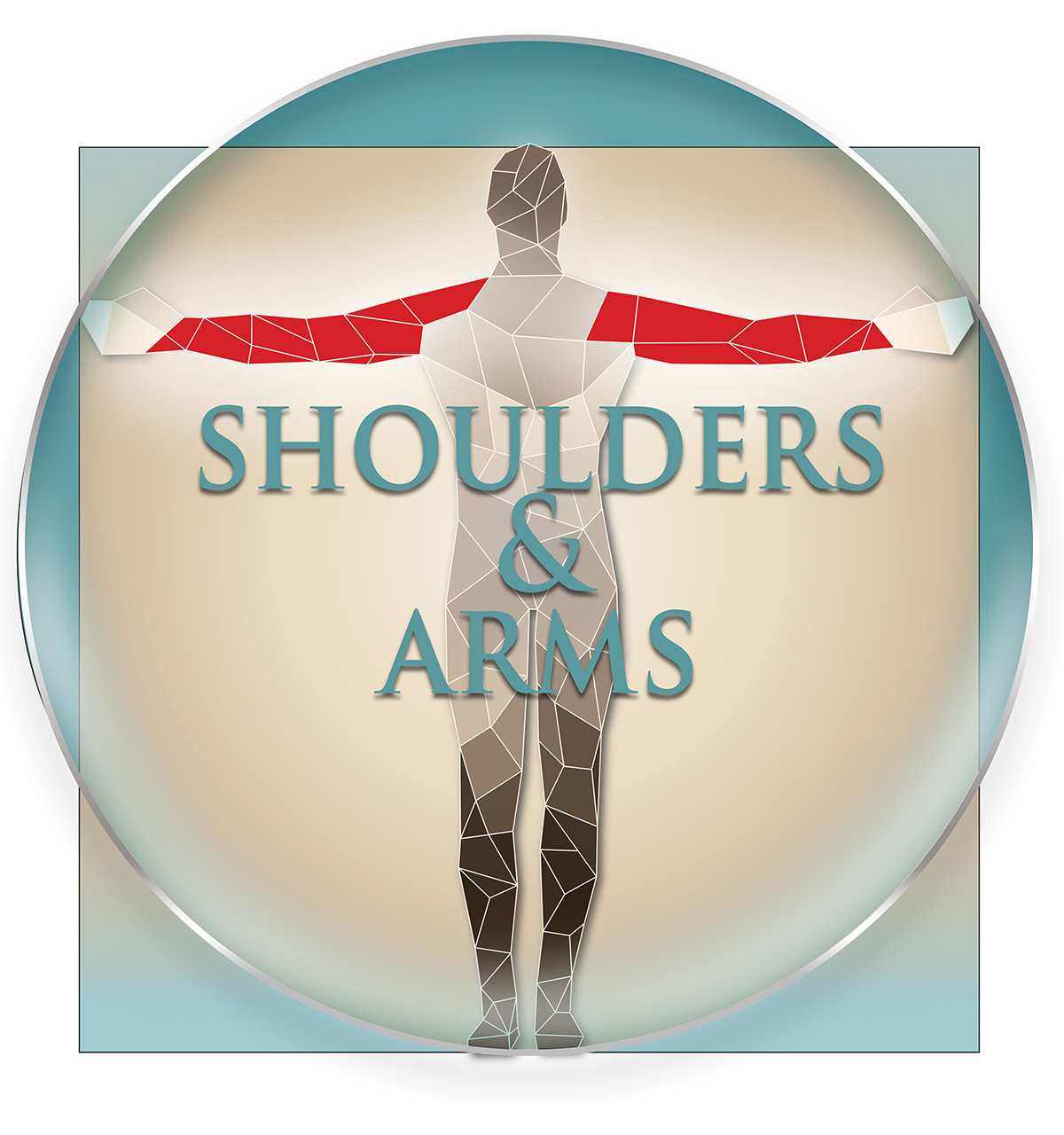 Shoulder/Arms